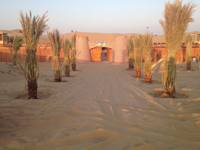 Complete Details of Desert safari