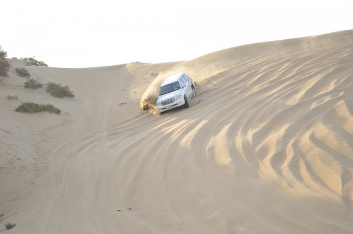 Desert Sefari
